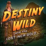 Destiny Wild - logo