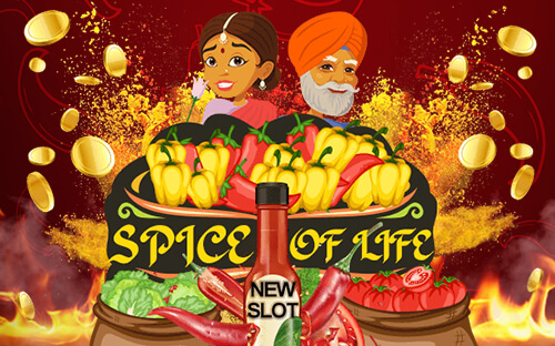 The Saucy Spice of Life Video Slot